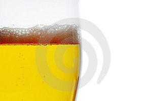 Pint Of Beer Closeup Stock Photo - Image: 7772630