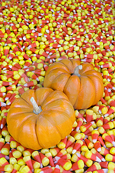 Mini Pumpkins In Candy Corn Royalty Free Stock Images - Image: 7782189