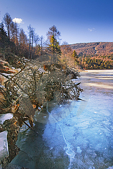 Ice Lake And Forests Royalty Free Stock Images - Image: 7793539