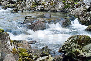 Mountain Stream With Cataracts In Norway Royalty Free Stock Photography - Image: 7795617