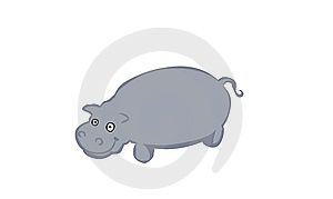 Hippopotamus Stock Photo - Image: 7803530