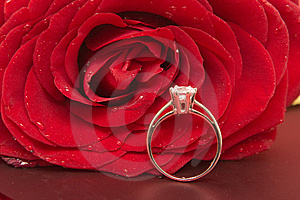 Valentine's Day Royalty Free Stock Images - Image: 7824649