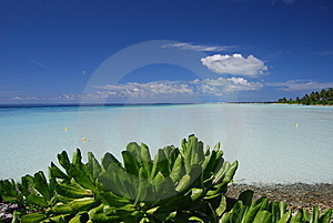 Peaceful Azure Lagoon Stock Photos - Image: 7828643