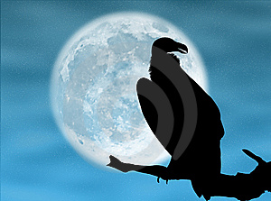 Eagle In The Moon Stock Photography - Image: 7834332