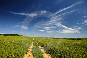 Road Path In Beautiful Spring Landscape Royalty Free Stock Images - Image: 7834399