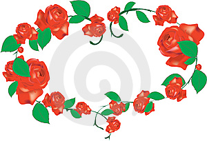 Roses Stock Photography - Image: 7841432