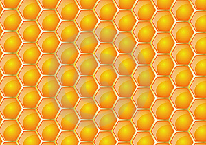 Honeycomb Texture Royalty Free Stock Photography - Image: 7843097