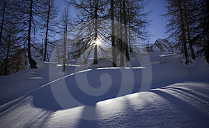 Shadows On The Snow Royalty Free Stock Photos - Image: 7844008