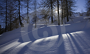 Shadows On The Snow Royalty Free Stock Images - Image: 7844189