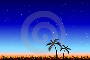 Tropical Night Stock Photography - Image: 7848232