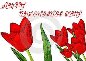 Valentines Day Stock Photos - Image: 7855343