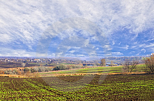 Fields Under Blue Firmament Royalty Free Stock Photography - Image: 7859527