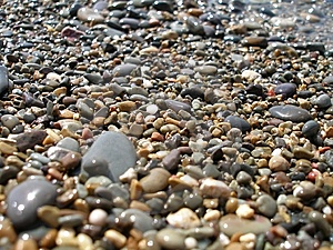 Moist Shingle Royalty Free Stock Images - Image: 7860099