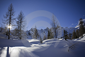 Shadows On The Snow Royalty Free Stock Photography - Image: 7868117