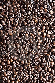 Coffee bean texture Stock Photo