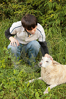 Fellow Caresses By Hand Dog Royalty Free Stock Photos - Image: 7890628