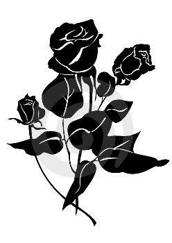 Floral Element Stock Image - Image: 7893281