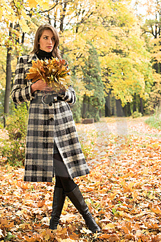 Young Woman In Autumnal Park Stock Photography - Image: 7894152