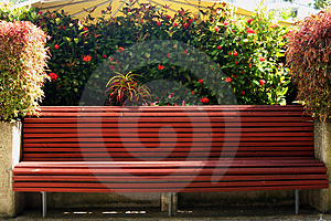 Tropical Park Bench Royalty Free Stock Photo - Image: 791385