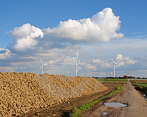 Windmill Park With Stack Of Sugar Beet Stock Image - Image: 7914951