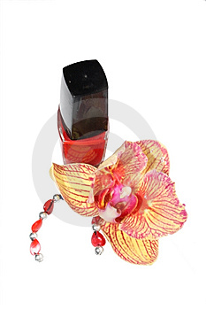Cosmetics Royalty Free Stock Image - Image: 7928086
