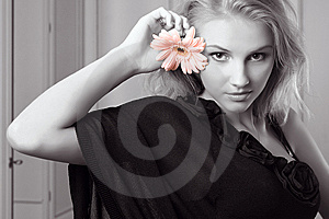Attractive Young Woman Holding Gerbera Stock Photography - Image: 7931612