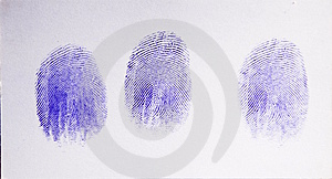 Imprints Stock Photography - Image: 7934882