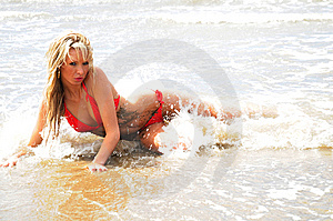 Babe On The Shore Royalty Free Stock Image - Image: 7939236