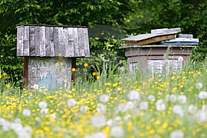 Apiary Stock Photos - Image: 7958553