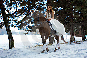 Woman On A Horse Royalty Free Stock Images - Image: 7959299
