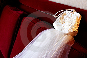 Purse And Veil Royalty Free Stock Photo - Image: 7961065