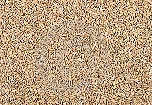 Groat Oatmeal. Royalty Free Stock Photo - Image: 7961835