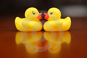 Yellow  Duckling Royalty Free Stock Photography - Image: 7962497