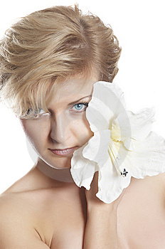 Perfect Woman Is Hidden For  Flower Stock Photography - Image: 7973892