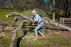 Woman Chain Sawing An Oak Tree Royalty Free Stock Photos - Image: 7980368