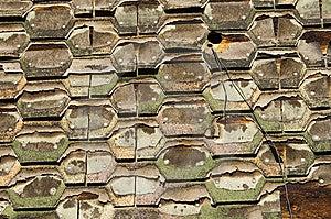 Shingled Wall Stock Photography - Image: 7981662