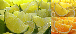Citrus Fruit Collection Royalty Free Stock Photos - Image: 7982978