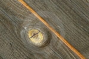 粗砺的木头 免版税库存图片 - 图片: 7984009