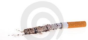 Cigarette Burn On White Background Stock Photos - Image: 7996243
