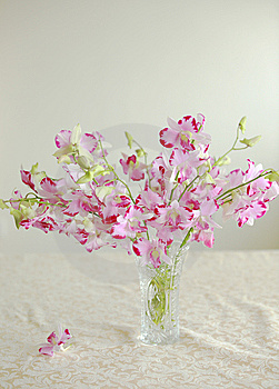 Flowers Stock Photography - Image: 7998212