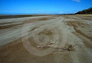 Deserted Beach Royalty Free Stock Photo