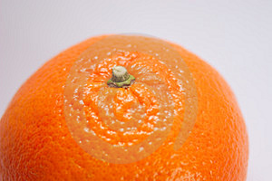 Sweet Orange Free Stock Image
