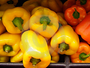 Yellow And Orange Peppers Free Stock Photo