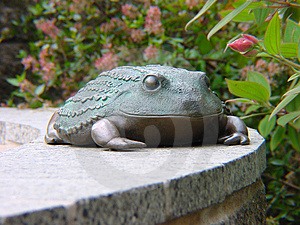 Frog Statue Free Stock Photography