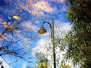 Reflections Free Stock Photo