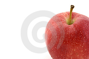 Fresh Red Apple Free Stock Images