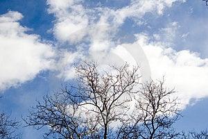 Wolken Stock Fotografie