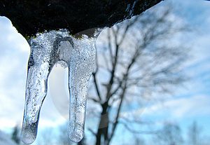 Icicle Free Stock Photos