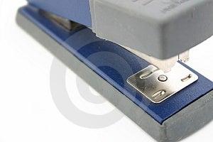 Stapler Stock Image
