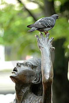 Pigeon And Statue Royalty Free Stock Photo - Image: 800255